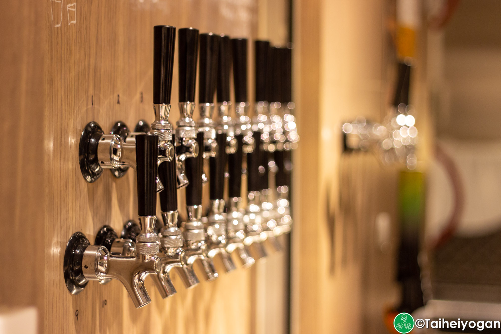 Ant 'n Bee (龍土町店・Ryudocho) - Interior - Beer Taps