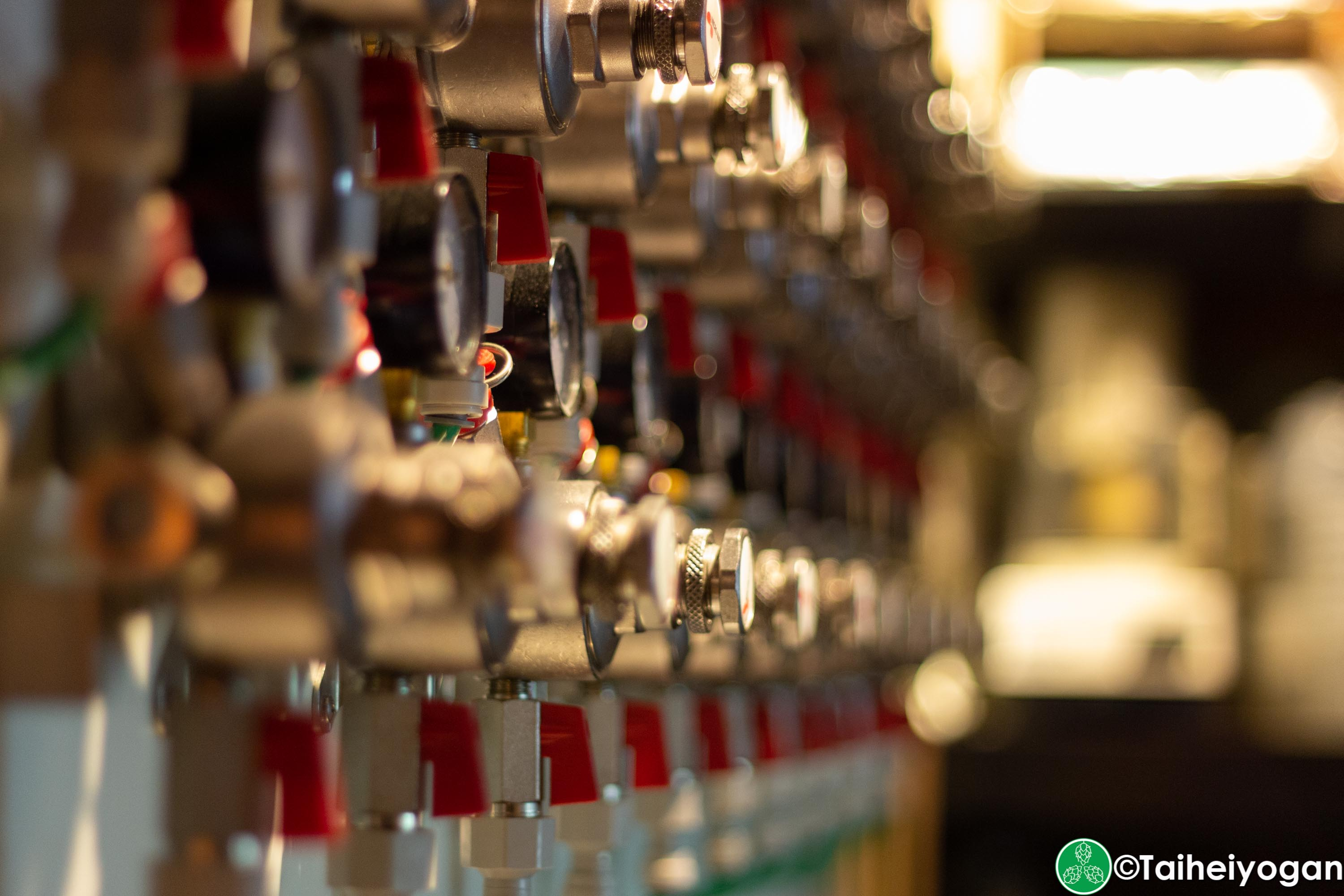 Craft Beer Bar Ibrew (Ginza/銀座) - Interior - Beer Taps