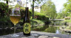 Iwate Kura Sansho Herb Ale