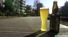 Aoi Brewing - Ocha Infused Ale