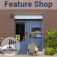 Primordial Feature Shop
