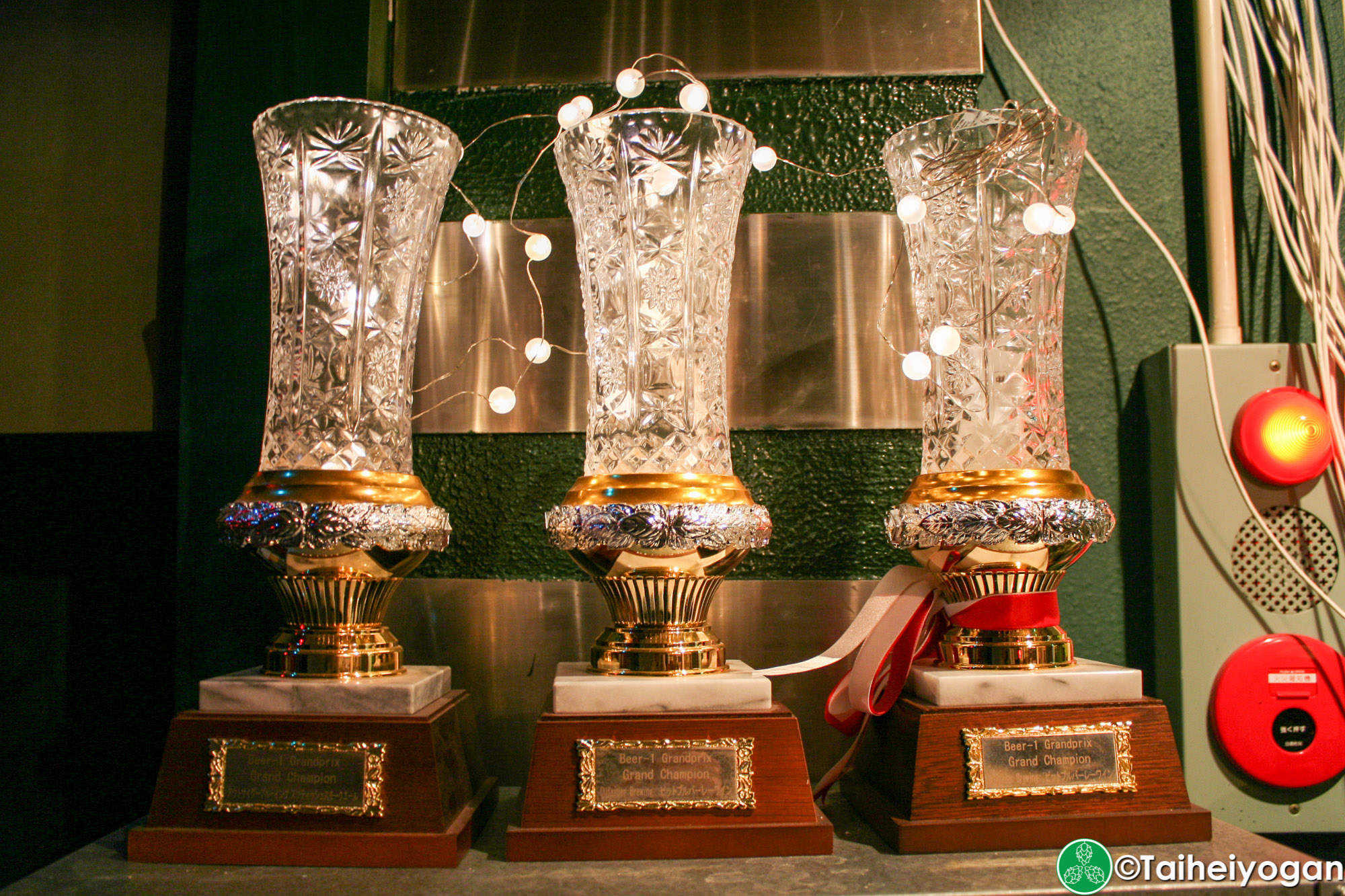 Hops & Herbs - Interior - Decorations - Outsider Brewing Craft Beer Awards
